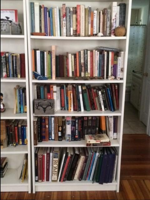 A Tour of Redheadedgirl's Bookshelf