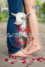 Why Did It Have to Be You by Allyson Charles