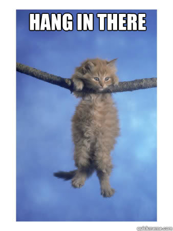 """A kitten hangs from a tree branch. The words """"Hang in There"""" appear above him."""