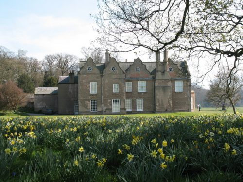 The front view of the house, with a field of daffodils in the foreground