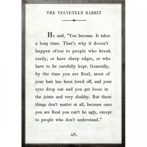 A quote from The Velveteen Rabbit about how something that's real can't be ugly, except to people who don't understand.