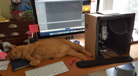 Orville, my very large orange tabby, sprawled out across my desk with my computer, keyboard, and soundbox and mic on the desk around him. he's very very large