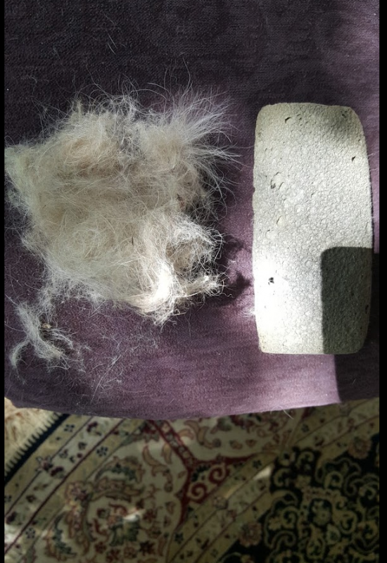 Photograph of purple chaise with hair removal stone and wad of hair I took off the chair with 10 minutes of use