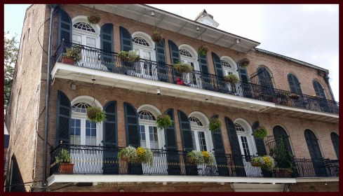 Another French Quarter balcony, with black shutters and huge plants in baskets on the balcony railing