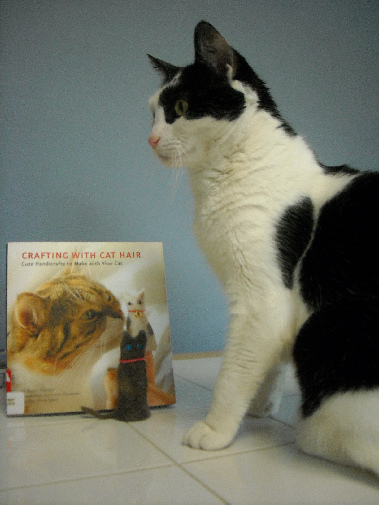 Biggie, a black and white shorthair cat, a copy of the book, and a cat fur finger puppet