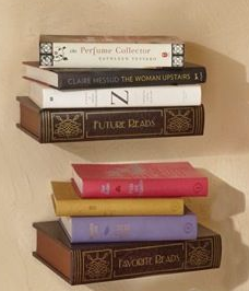 Bookshelves that look like books that read future reads and favorite reads