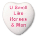 U Smell Like Horses & Man